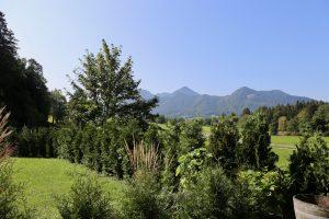 Bergblich | Zellerhorn
